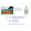 塑胶跑道专用环保增塑剂不析出环保不冒油耐老化